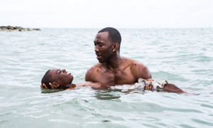 Moonlight (Barry Jenkins, 2016)